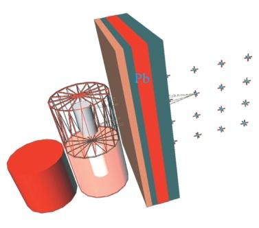 Apšvitos dozės modeliavimas MicroSkySchine ir MicroShield