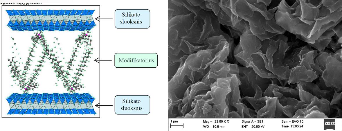 2 pav. Modifikuoto sluoksninio silikato struktūros modelis ir SEM nuotrauka